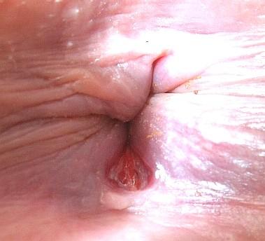 Kagney lynn karter anal